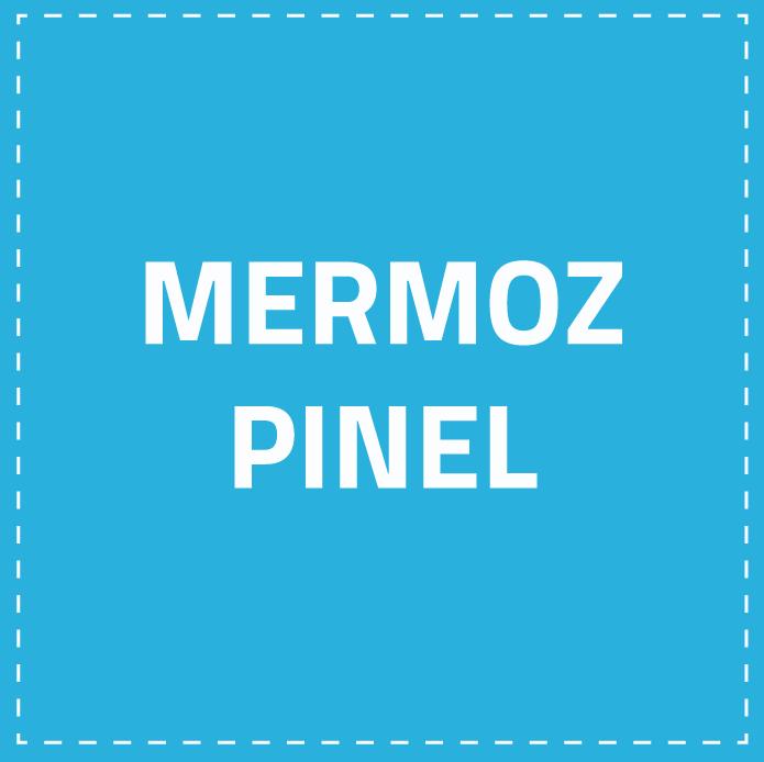 Mermoz Pinel