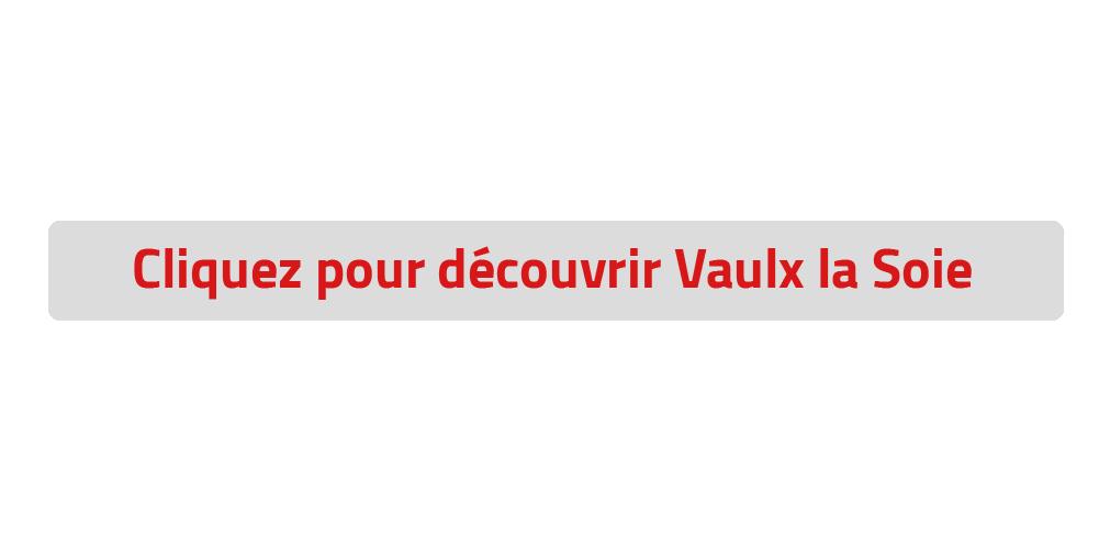 Informations Vaulx en velin